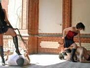 public-femdom-beating-2